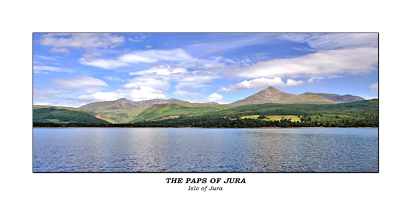The Pups of Jura No.003